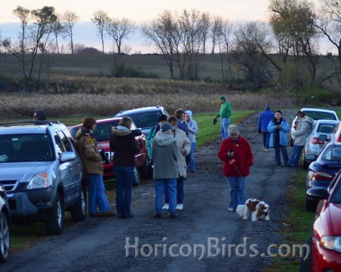 Crane watchers stand along the road in LaSalle County, Illinois waiting for flyover, 26 October 2012.  Photo by Pam Rotella