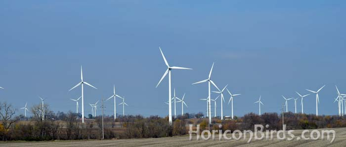 Mendota Hills Wind Farm near Paw Paw, Illinois, mentioned by Richard van Heuvelen in his Pilot's notes.  Photo by Pam Rotella