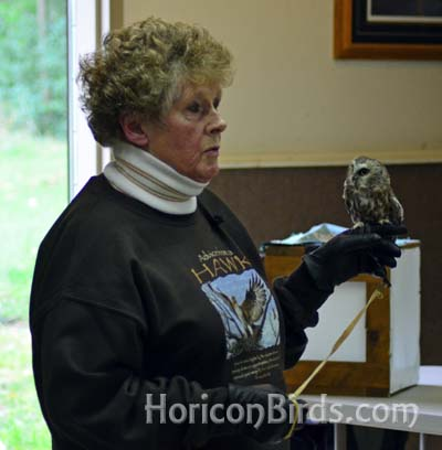 Pat Fisher of The Feather Rehabilitation Center, photo by Pam Rotella
