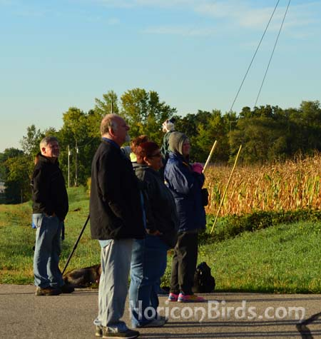 An early-morning crowd turned out to see the cranes depart, 30 September 2013, photo by Pam Rotella